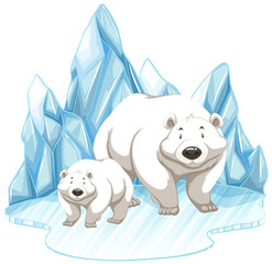Two polar bears on iceberg