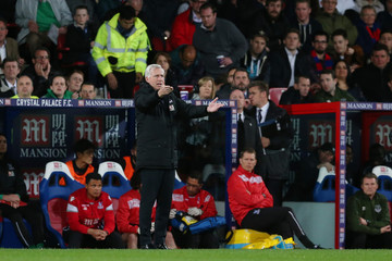 Crystal Palace v Everton - Barclays Premier League