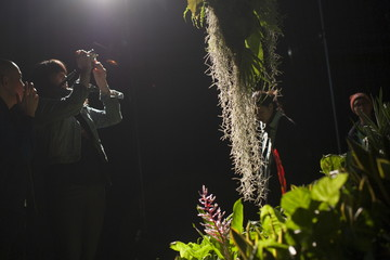 A woman photographs the installation at Lowline Lab during opening weekend in Manhattan