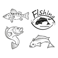 Set of four black  logo silhouettes of  River fish, illustration isolated on white background, vector image of animals, Fishing club logo
