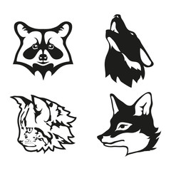 Set of four black  logo silhouettes of raccoon and vector image of cat with Fox and wolf, illustration isolated on white background, Wild shaggy animals