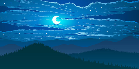 Vector landscape. Night in mountains valley.