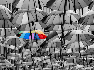 Colorful Umbrella Among Others Different From The Crowd Concept