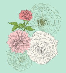 Hand drawn illustration with flowers. Floral background