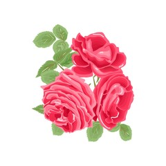 beautiful red roses. Floral greeting card of the wedding, birthday, Valentine's Day, mother's day and other holiday