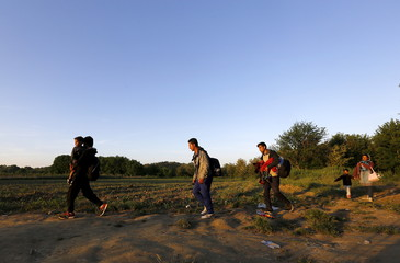 Syrian immigrants walk into Macedonia from Greece