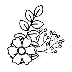 beautiful Flower decoration icon vector illustration design