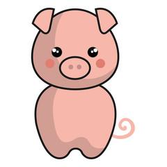 cute and tender piggy kawaii style vector illustration design