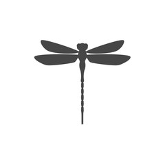 Dragonfly insect