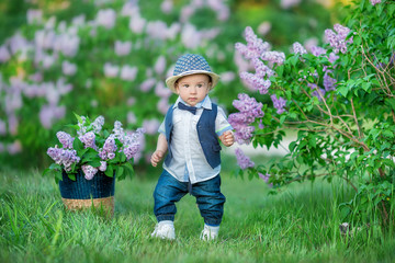 Little boy on the beautiful green lawn with lilac. Image with selective focus