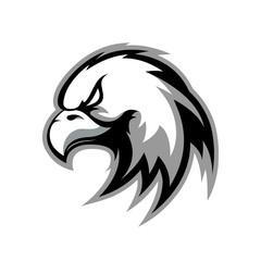 Furious eagle sport vector logo concept isolated on white background.