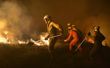 Firefighters tackle a forest fire near the Basque town of Berango
