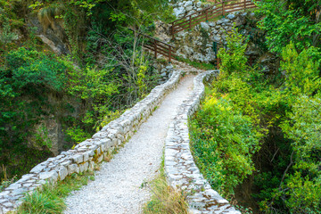 An old, arched stone bridge on the Canal del Texu trail between the village Bulnes and Poncebos, at the river Rio Cares in the Picos de Europa