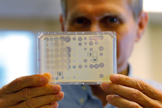 Dr. Kim Lewis holds up a test of new, potential antibiotics at his lab in Boston