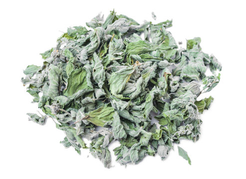 Dried white horehound herb  isolated on white background