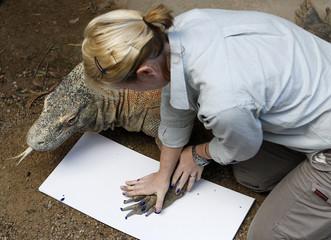 "A zookeeper takes the footprint of Komodo dragon ""Tuka"" at Taronga Zoo in Sydney"