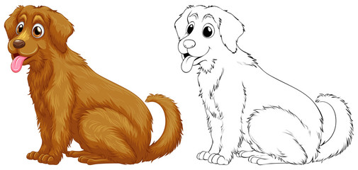 Animal outline for golden retriever dog
