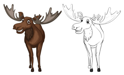Animal outline for moose