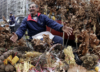A street vendor sells traditional oak-branches, a symbol of Orthodox Christmas in Belgrade