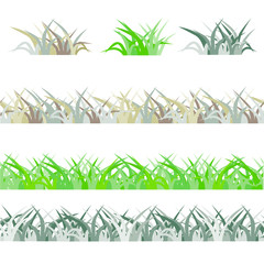 Seamless green grass field. Grass pattern isolated on white background. Collection of different grass scaled front plants. Vector grass illustration EPS8