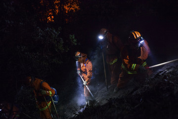 The McCain inmate crew out of San Diego cuts a fire line on a steep slope on the Rim Fire near Buck Meadows, California