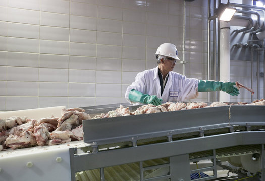A worker removes a bone at the pink slime or lean finely textured beef production line at the Beef Products Inc. Plant in South Sioux City, Nebraska