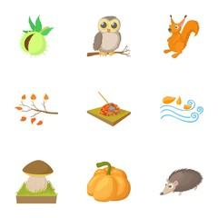 Season of year autumn icons set, cartoon style