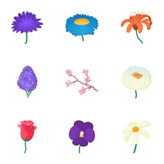 Flowers icons set, cartoon style