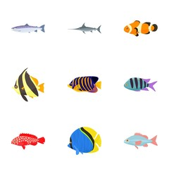 Marine fish icons set, cartoon style
