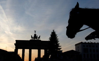 A horse is silhouetted with a Christmas tree in front of the Brandenburg Gate in Berlin