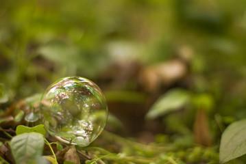 soap bubble, grass, spring, copy space