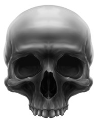 Detailed graphic grey human skull with teeth illustration