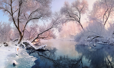 Mostly calm winter river, surrounded by trees covered with hoarfrost and snow that falls on a beautiful pink morning light.Christmas lace.Magnificent winter landscape in pink tones.Europe