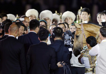China's President Xi Jinping smiles next to a Ferghana horse as he attends the opening ceremony of 2014 International Akhal-Take Horses Association Special Conference and China Horse Culture Festival in Beijing