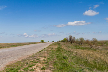 Road passing in the steppe