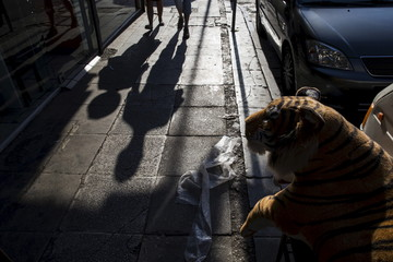 A couple cast shadows as they walk past a tiger doll for sale in Athens