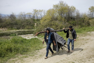 Migrants carry firewood at the Greek-Macedonian border near the village of Idomeni