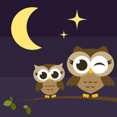 two cute owls on branches at night