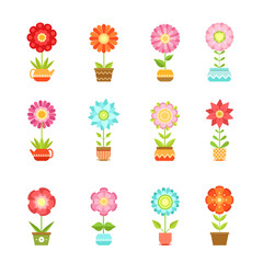 Vector flowers in different pots. Floral set isolate on white background
