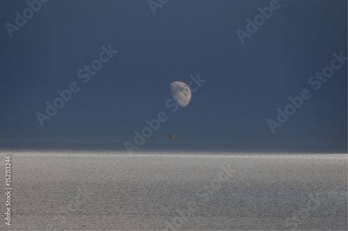 Luna Sul Mare Stock Photo And Royalty Free Images On Fotoliacom