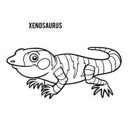 Coloring book, Xenosaurus