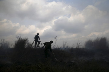 Soldiers hold a water pipe as they extinguish the fire at palm oil plantations at the Padamaran village in Ogan Komering Ilir district, Indonesia's South Sumatra province