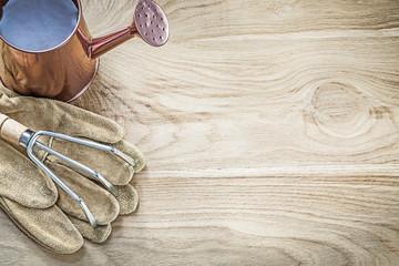 Watering can metal rake gardening gloves on wood board copy spac