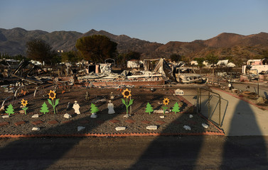 Decorative sunflowers line a fence at a residence leveled by the Erskine Fire in South Lake