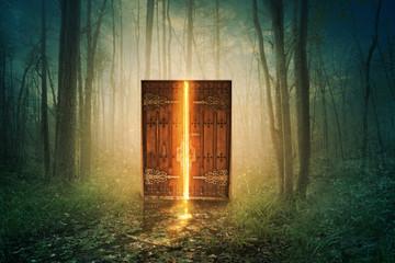 Glowing door in forest Wall mural
