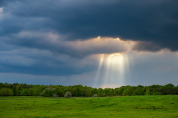 Sunrays over the stormy field