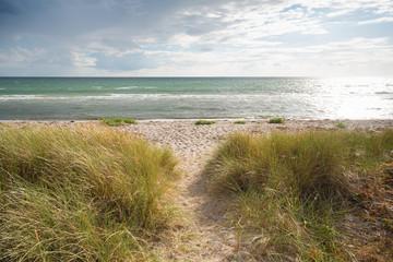 danish beach landscape