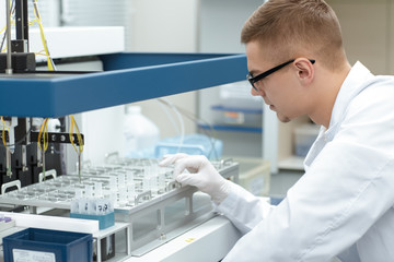 Young male scientist working at the laboratory