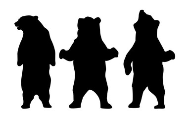 Collection of silhouettes of bears. Bear Silhouette Animal