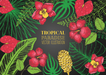 Tropical palm leaves design template. Vector illustration leaves and flowers of palm frame. Wedding invitation vintage card. Botanical set vector illustration
